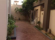 More rooms Villa palace for rent in Tripoli