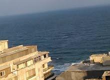 شقة للايجار بسيدى بشر خطوااااط من البحر
