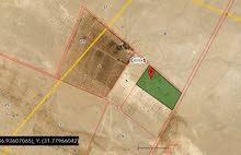 أرض زراعية في الأردن - منطقة الأزرق مع بئر ماء ارتوازي ، تصلح لزراعة النخيل وغيرها من المحاصيل