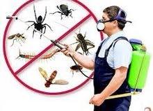 تنظيفات ودواء للحشرات