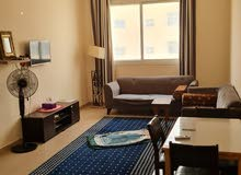 furnished apartment for monthly rent