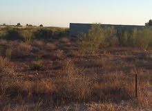 أرض 578م وادي الربيع الجنين