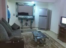 أستوديو للإيجار المفروش في أحمد عرابي