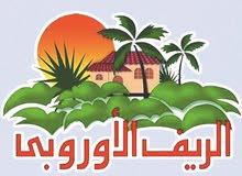 فدان للبيع على طريق مصر إسكندرية الصحراوي - بالريف الأوروبي ك58