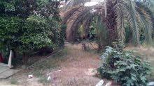 ارض 500 متر في شارع الوكالات بالقرب من صيدليه بوزريبه