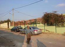 مزرعه مع بيت مساحة البيت 70 متر البيع