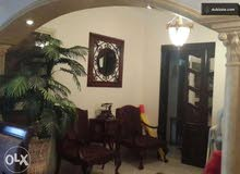 More than 5 apartment for rent - Nasr City