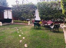 حدائق السليمانية