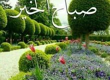 شقة للايجار. للعرسان أو عائلة صغيرة /حي الأمير حمزه قرب مسجد النور