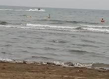 ارض للبيع ف مخطط الشاطئ بالقنفذه