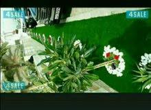 تنسيق  حدائق أبوعلي