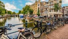 تقديم السفارة   الهولندا