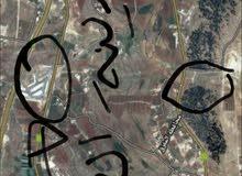 ارض مفروزة بكوشان مستقل  مساحتها 3.400  جرش المجر