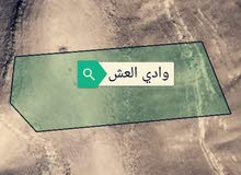 أرض مميزة للبيع في وادي العش