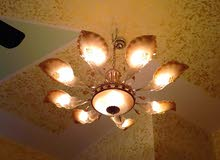 Own now Lighting - Chandeliers - Table Lamps at a special price