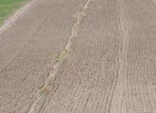 ارض زراعية للبيع في منطقه الاغور الشماليه