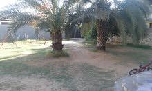 2000 sqm  Villa for sale in Tripoli