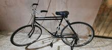 for sell bicycle