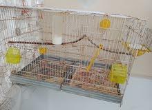 A vendre grand cage