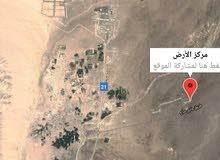 أرضين شبك في محافظة البريمي قريب منفذ حفيت الحدودي