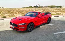Ford Mustang Convertible 2019 in Mint Condition