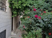 شقه ديلوكس شبه ارضي في ضاحيه الاقصى  قرب من الخدمات بجانب مسجد ابو بكر