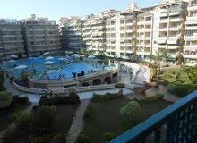 شقة 130م تطل علي حمام السباحة والمساحات الخضراء في منتجع فاخر جدا