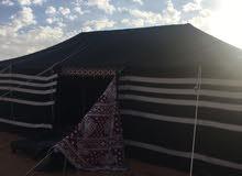 مخيمات الحمراني في التنهات