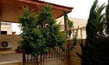 منزل مستقل للبيع قرب جامعه علوم التطبيقيه شفا بدران 0777883528