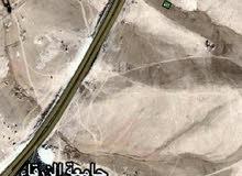 قطعة ارض مميزة وقريبه جدا ع الشارع الدولي بجانب جامعة الزرقاء الاهلية