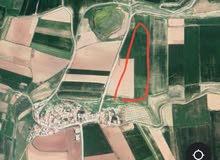 أرض زراعية صالحة للزراعة بالري