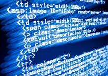 programming language / orient house academy