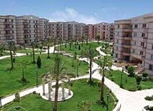 للمستثمرين شقة للبيع ارضي بالرحاب عقد شهري 13 الف