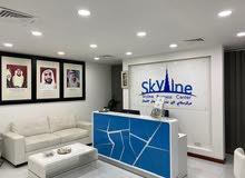 skyline business center
