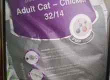 طعام قطط دراى فود 10 كيلو
