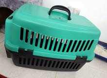 Cat supplies and accessories. (Ask for price of each item)