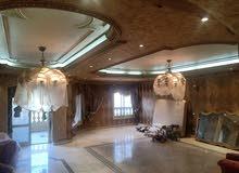400م شقة العمر مساحة وموقع وفيو وبحري اللترا لوكس