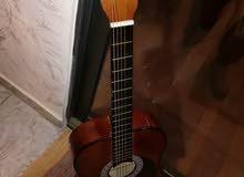 جيتار ADAMS 120