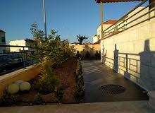 Luxury 355 sqm Villa for rent in AmmanAirport Road - Manaseer Gs