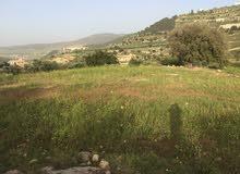 ارض زراعيه السلط  3600 م الرميمين وادي الحور