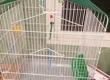 قفص طيور