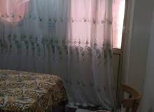 شقة مفروشة للايجار طلبة أَو أسرة