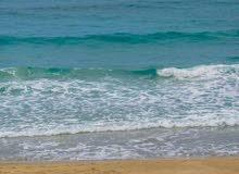 ارض فضاء مساحتها 2000م ملك على البحر مباشره بالقويعه بواجهه 25م للبيع
