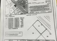 ارض سكني تجاري في صحار العوينات