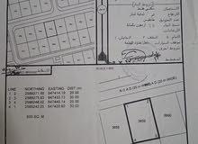 ارض للبيع  في مدينة النهضه الامتداد الاول سكنيه السعر 4900 آلاف صافي للمالك