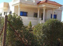 Best price 250 sqm apartment for sale in Ramtha
