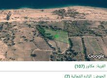 للبيع ارض 12.5 دونم في الزاره البحر الميت البانوراما