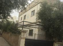 اربد حي المطارق شمال مدرسة الحسن ابن الهيثم