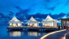 اختصاصي تأسيس وإدارة وتشغيل مكاتب السفر و السياحة
