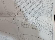قطعة ارض مفروز دفعه واقساط قرب شارع الستين ثالث قطعه عن الشارع رقم القطعه 737